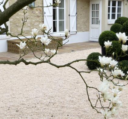 La cour des Magnolias