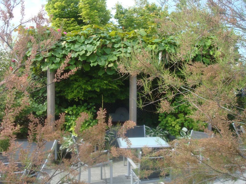 Terrasse parisienne Entre Ciel et Vert