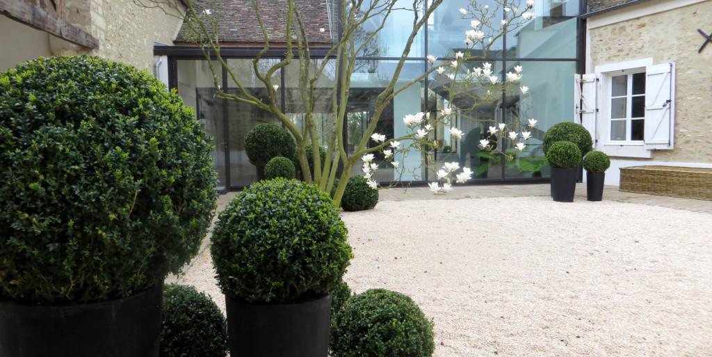 Magnolias Entre Ciel et Vert